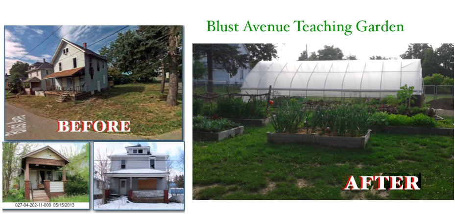 A Teaching Garden is Born