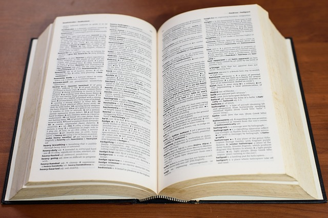 Election terms - a handy glossary
