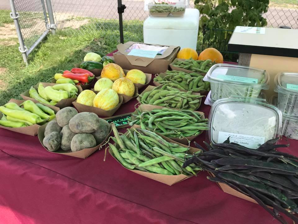 Final Farmer's Market and Thank You Picnic  - Sept. 26